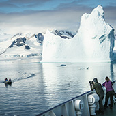 Emperor Penguin - Polar Circle - Antarctic Peninsula